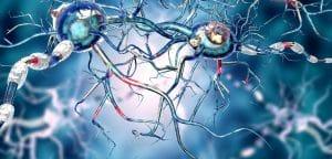 células madre desarrolladas recientemente para tratar la enfermedad de Parkinson