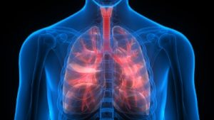 copd stem cells treatmen