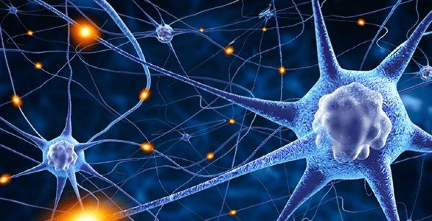 Regenerative Medicine, History, Stem Cells, FDA Trials, Costa Rica  Treatment Clinic